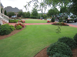 Beautiful green lawn by Georgia